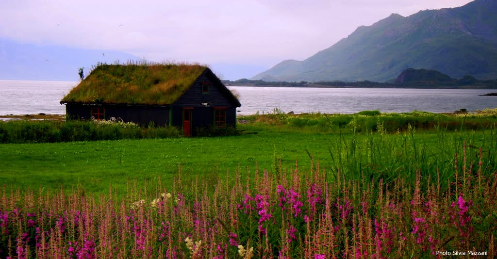 Cabin on the shore of the Eidsfjorden