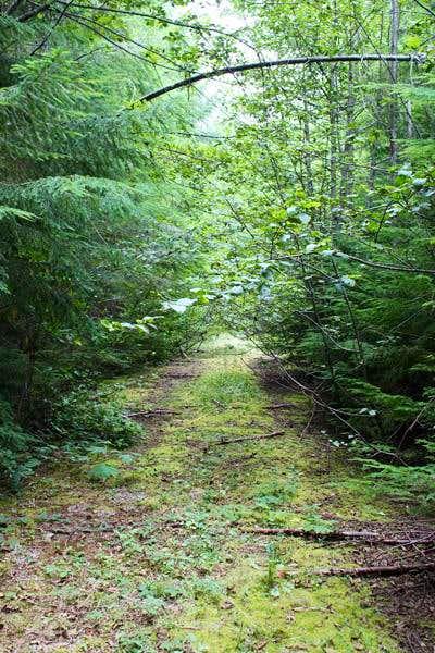 Grass Mountain Road