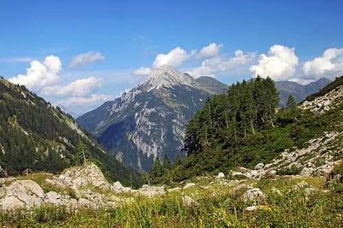 Polinik from the Obere Valentinalm