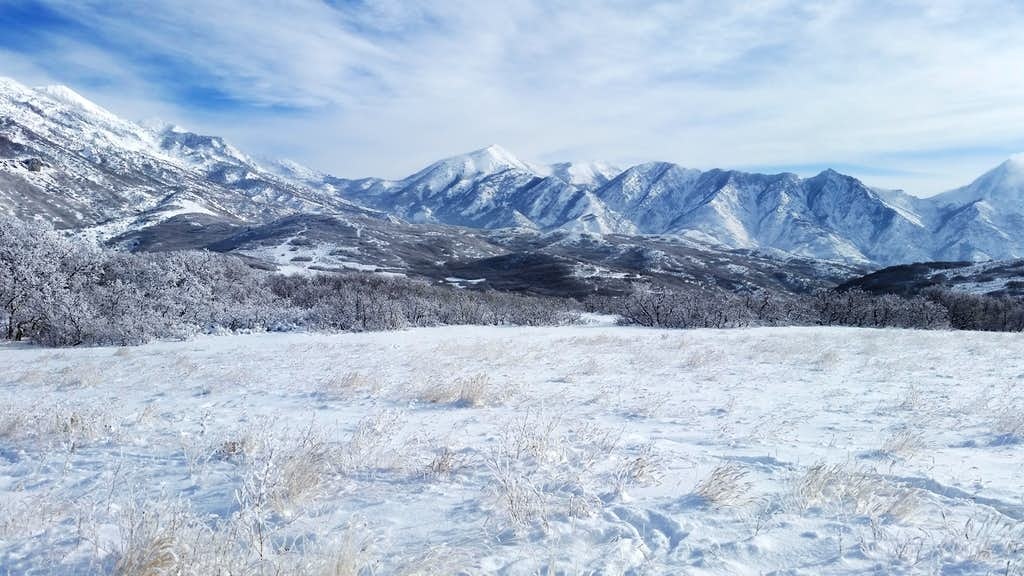 Box Elder Peak in Winter
