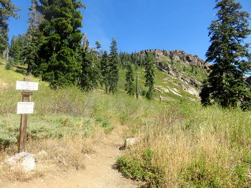 Mount Elwell trail junction