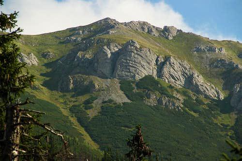 Mt.Bujaci vrch