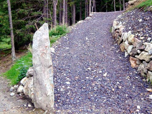 Area/ b (paths) Sixth entrance towards Servette 2015