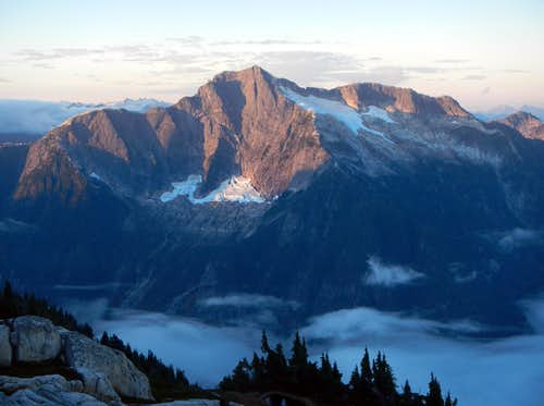Davis North Face