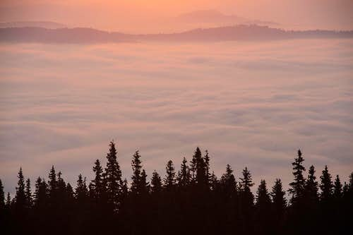 Morning carpet of clouds over Bucovina
