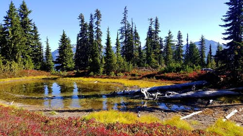 Fall Colors and Dehydrated Tarn