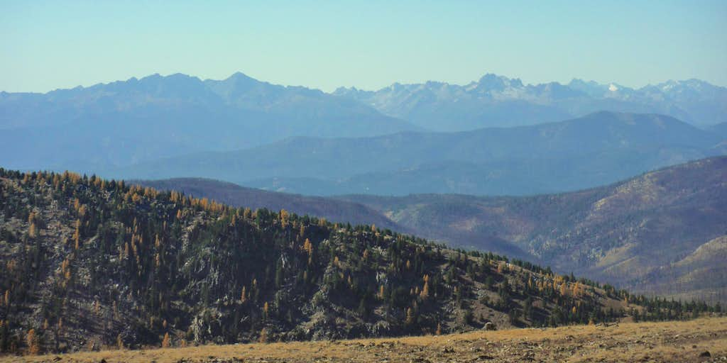 Distant larches and mountain