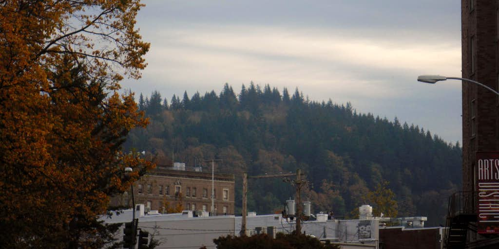 Sehome Hill from downtown Bellingham
