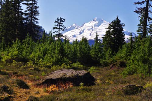 Mt. Baker from the trail to Lake Ann