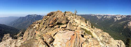 Along the ridge S of the summit.