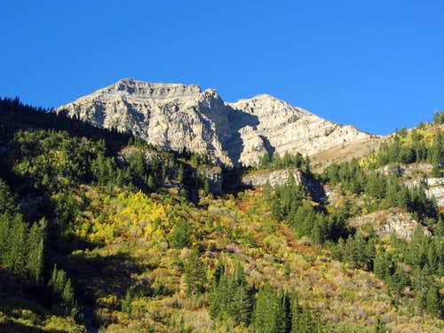 North Timp over bushwhacky terrain