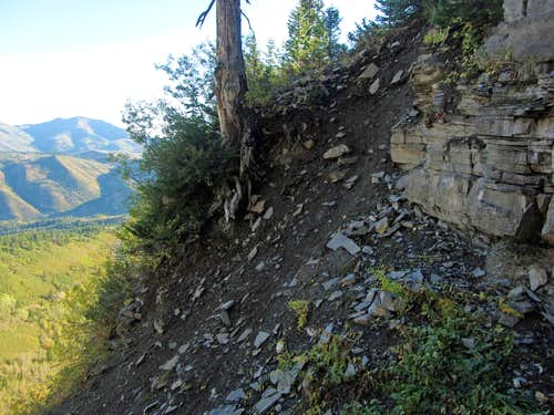 Steep dirt slope
