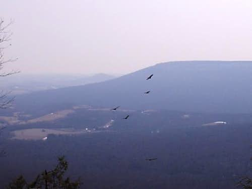 Golden Eagle Trail