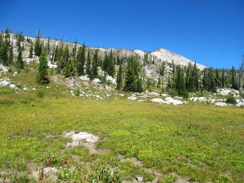 gaining Buffalo Hump ridge
