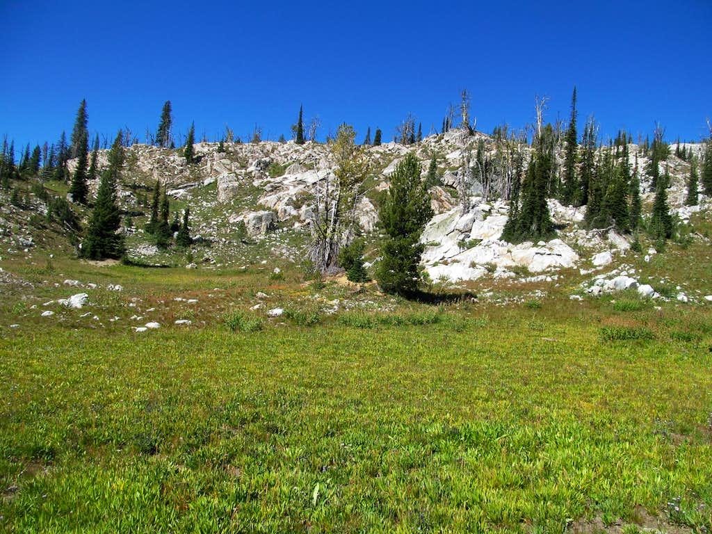 a green pasture where i gained the ridge