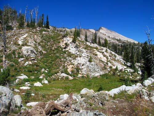 Buffalo Hump ridge