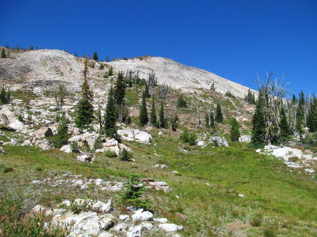 upper slopes of Buffalo Hump