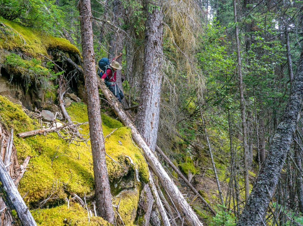Navigating steep terrain on the hike out.