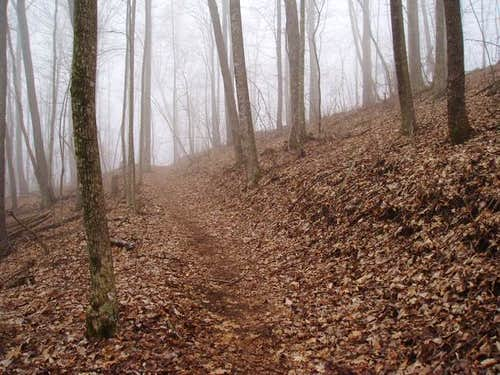 Foggy trail coming up from...