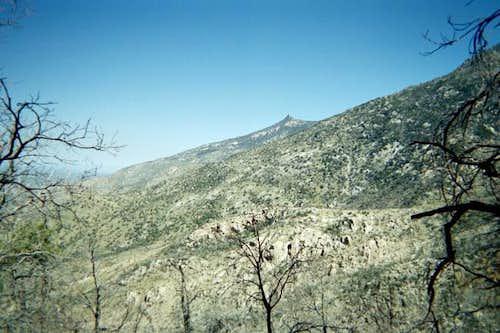 A view of Samaniego Peak.