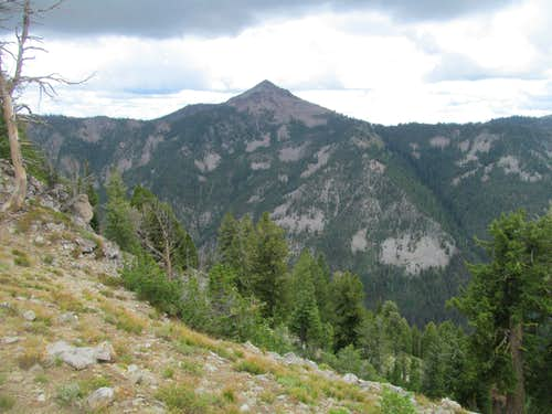 Newman Peak