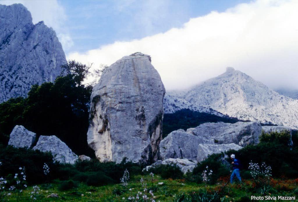 Cusidore - The huge boulder of Pedra 'e Littu