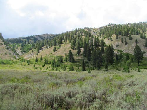 lower slopes of 2point from bear creek rd