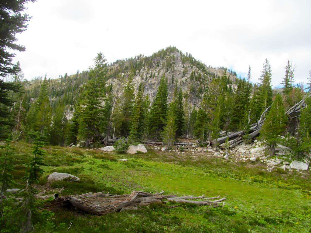 last 500 feet up Log