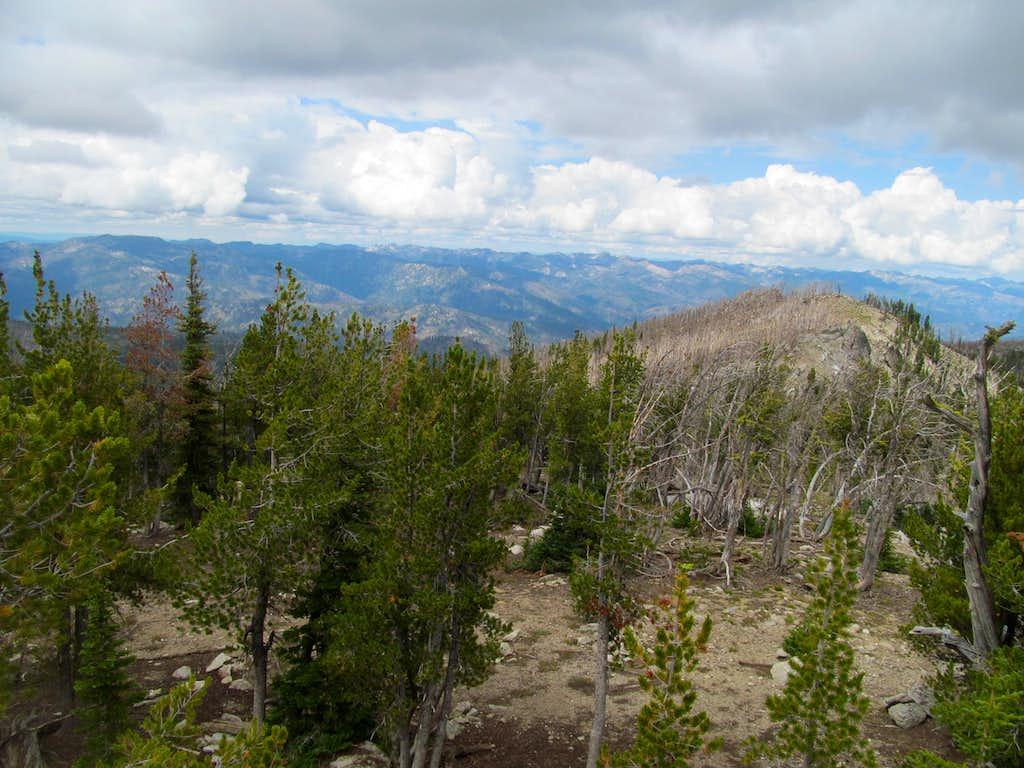 Lick Creek Range from Log