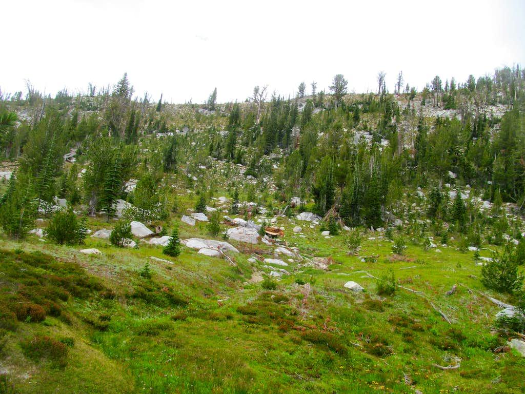 descending Log's southish summit area