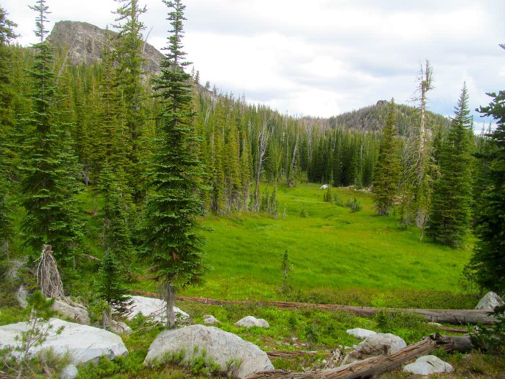 a meadow se of Log