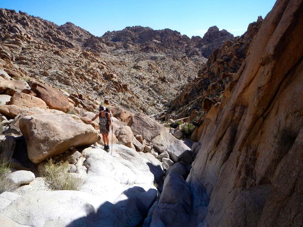 Half Way Up The Canyon