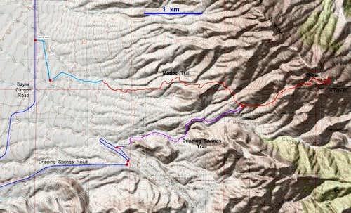 Routes to Organ Needle