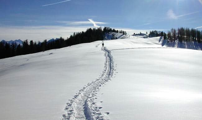 Towards Court de Bard (2261 m.)