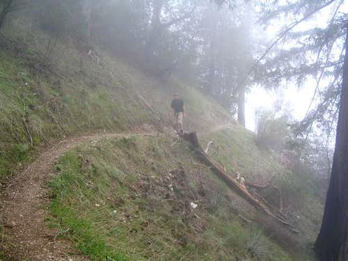 Hiking through the fog on the...