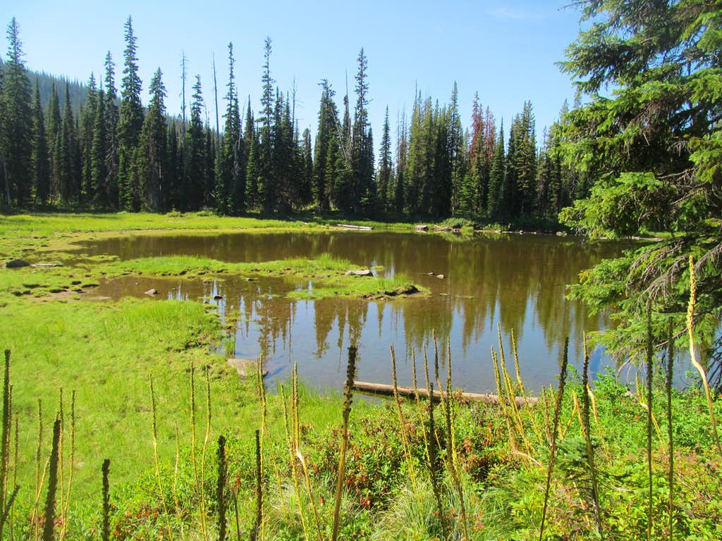 pond near Kooskookia Meadows