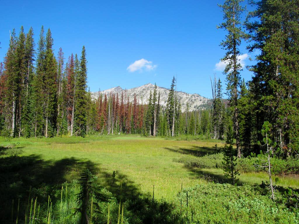 the trail near Kooskookia Meadows