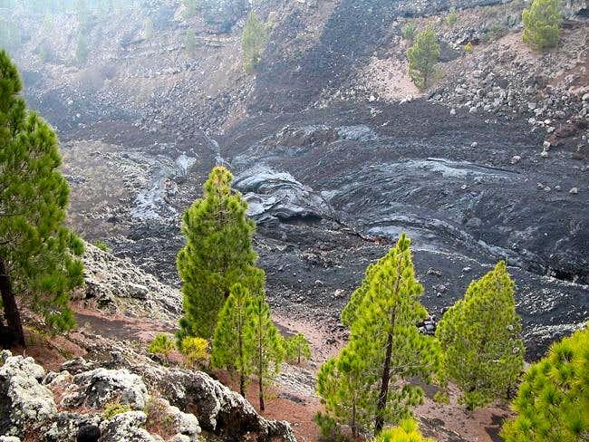 Along the San Juan lava flow...