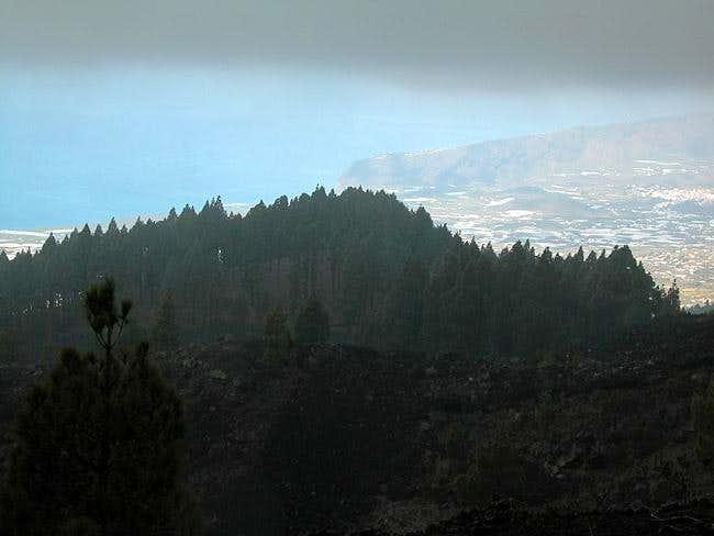 Illustration of La Palma's...