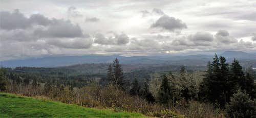 Coxcomb Hill (Astoria Column)