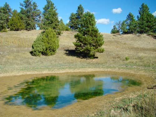 Maverick Mountain Pond