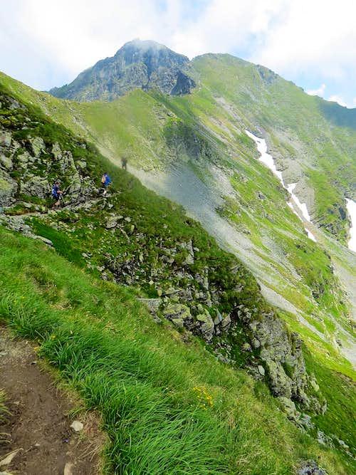 Final ascent to Vânătarea lui Buteanu