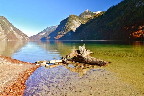 An old tree-trunk in the Königssee lake