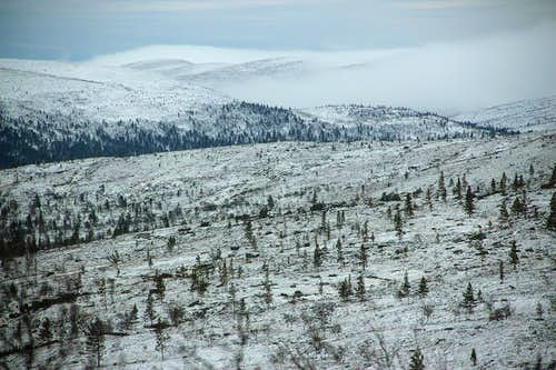 Saariselka windy highlands