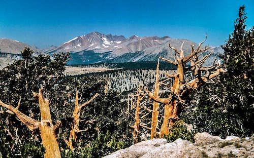 Kaweah Peaks from Cirque Peak