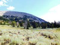 upper Robb Creek