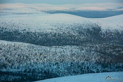 Koilliskaira wilderness