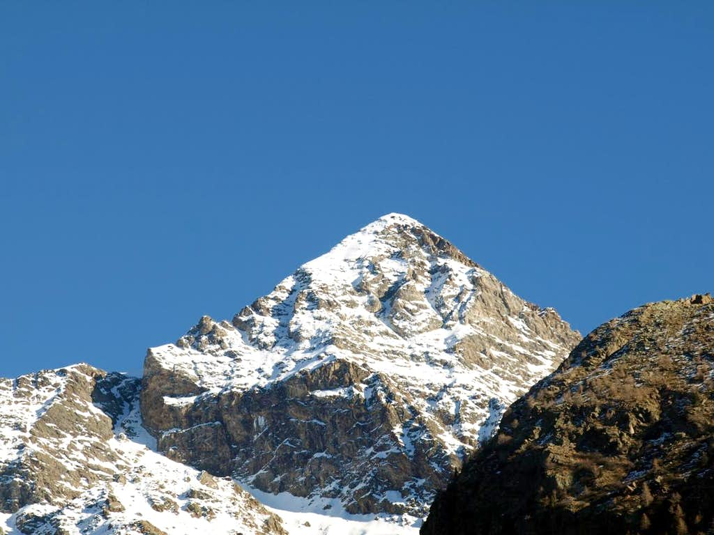 Valp ... Bca Luseney from Bionaz or Northwest 2015