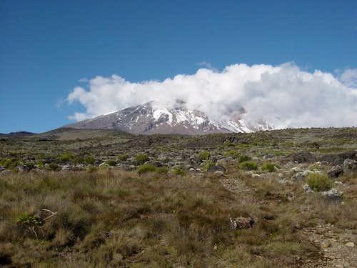 The summit of Kilimanjaro...