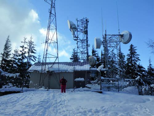 BearQueen and the radio tower